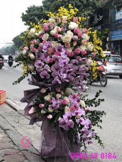 lang-hoa-chuc-mung-sang-trong-tai-ha-noi-gia-re-moonflower-ha-noi