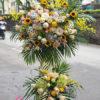 lang-hoa-tang-khai-truong-tai-ha-noi-gia-re-moonflower-ha-noi-2