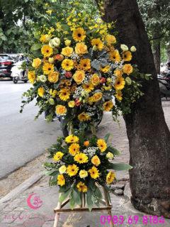 Lẵng hoa khai trương giá rẻ tại Hà Nội đồng tiền vàng