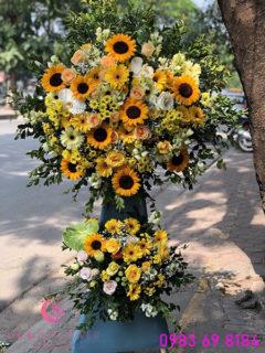 Lẵng hoa khai trương giá rẻ tại Hà Nội hoa hướng dương - Hy Vọng