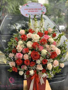 Giỏ hoa sinh nhật - Năng lượng lan toả